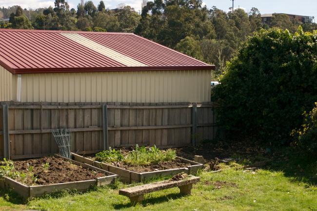 garden bed weeded