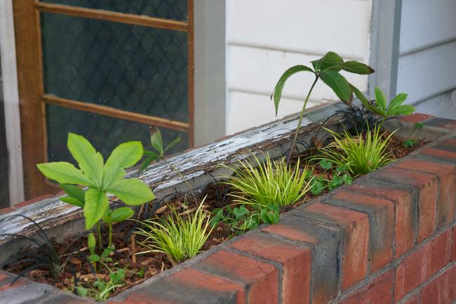 brick planter 3