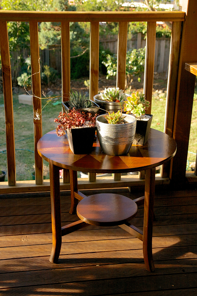 inlay table succulents 2