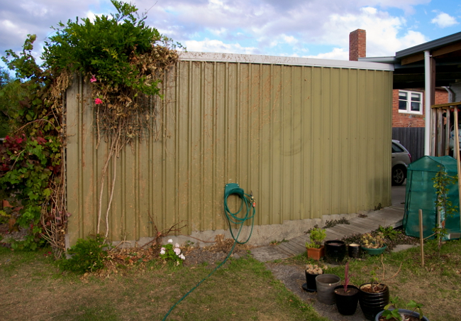 ivy wall mar