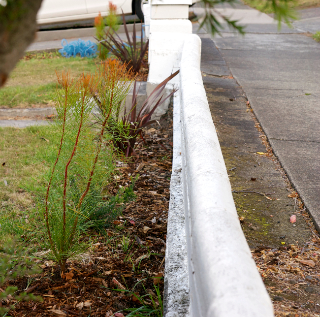 hedge wall 2