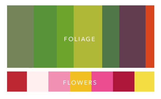 plant colour palette