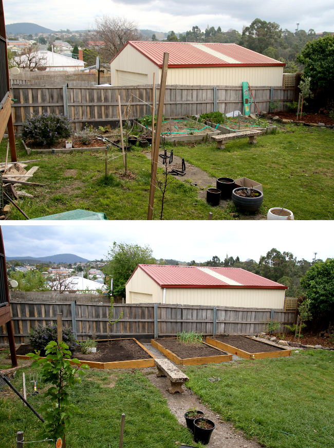 garden beds, before and after