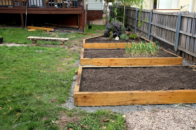 garden beds on the slope