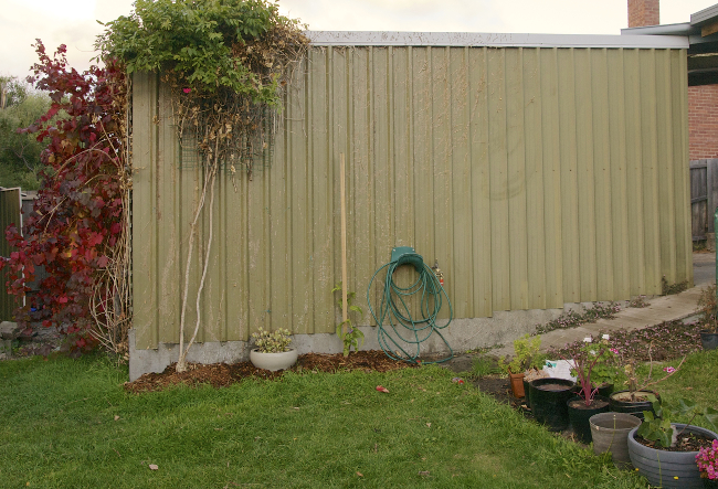 ivy removal