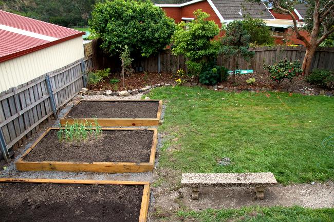 new garden beds 2