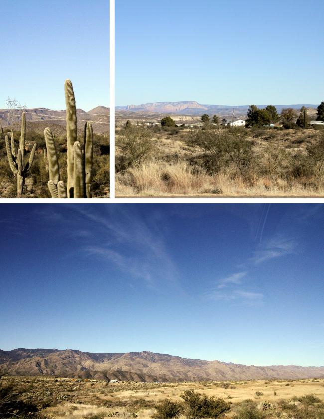 Desert scenes in Arizona
