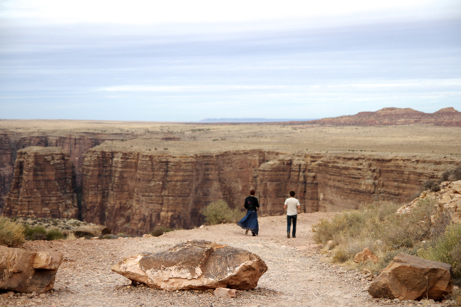Painted Desert canyon